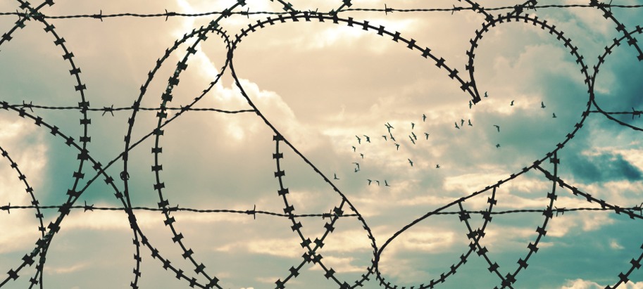 Reconciliation, birds flying, wire fence