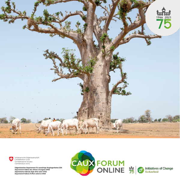 FDFA Baobabcowherd-1 Noah Elhardt through WikiCommons square with logos